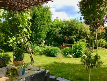 bunter-garten-plauder-bilder-thread-330116-2.jpeg